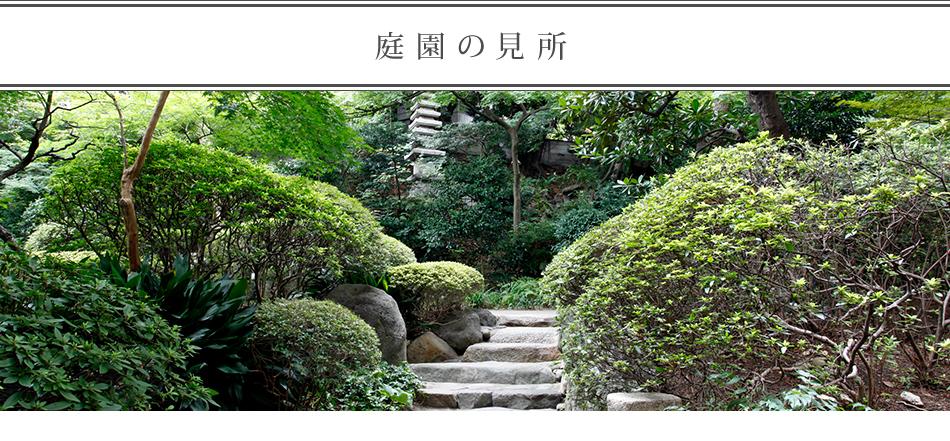 庭園の見所